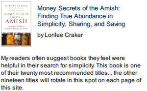 Money Secrets of the Amish front cover photo